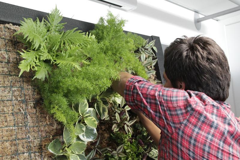 Curso de jardines verticales en madrid paisaje libre for Se necesita jardinero