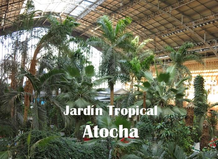 Diez motivos para visitar el jardín tropical invernadero de Atocha ...