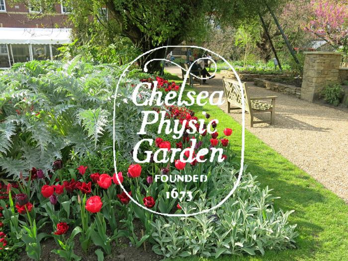 Descubre Chelsea Physic Garden, el pequeño botánico de Londres ...